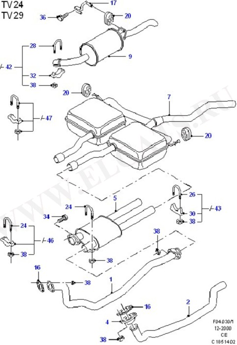 Exhaust System (Exhaust System And Heat Shields)