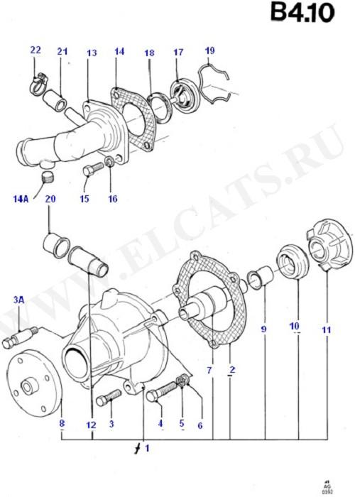 Engine Cooling (OHC(TL/LL))