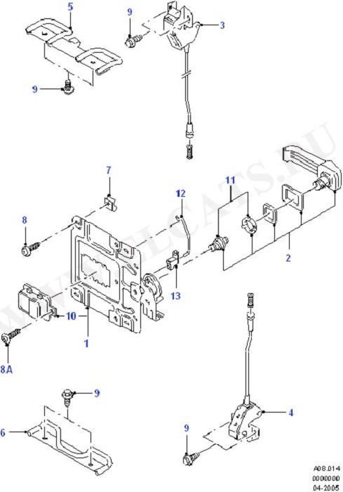 Double Rear Door Controls (Tailgate/Back Doors)