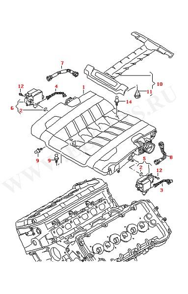 Вентиляция блока цилиндров Крышка впускного коллектора (Двигатель, Сцепление)