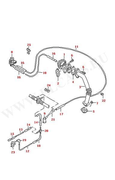 Вакуумная система Рециркуляция отработанных газов (Двигатель, Сцепление)