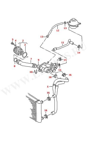 Водяная помпа Водяные шланги и трубки (Двигатель, Сцепление)